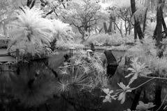 Alter chinesischer Garten, Südchina Lizenzfreie Stockbilder