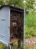 Alter elektrischer Kasten mit Leitungen Stockbild