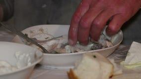 Alter Fischer, der Fischsuppe isst stock video