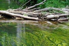 Alter Fluss Lizenzfreie Stockfotografie