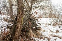 Alter gebrechlicher Zaun mit Stacheldraht Lizenzfreies Stockbild