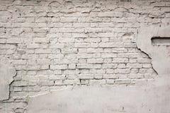 Alter gebrochener geschädigter vergipster gemalter weißer Backsteinmauer-Hintergrund Stockfoto