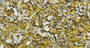 Alter gelber Ölfarbehintergrund Lizenzfreie Stockbilder