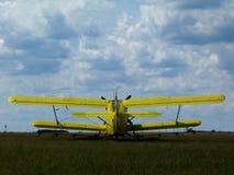 alter gelber doppelter Flügeldoppeldecker auf offenem grünem grasartigem Flugplatz lizenzfreie stockfotografie