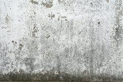 Alter gemalter Beton mit Abziehbild Stockfotos