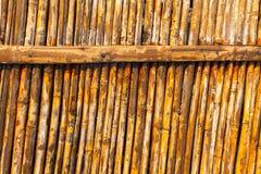Alter gestreifter Bambus lizenzfreie stockfotos