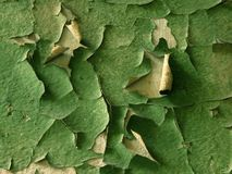 Alter grüner Lack Stockfotografie
