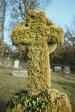 Alter Grabstein abgedeckt im Efeu Stockbild