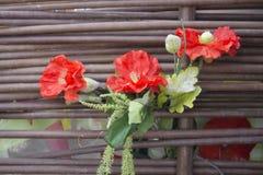 Alter hölzerner Hintergrund, grüner Hintergrund mit Sonnenblume und Mohnblume Stockfotografie