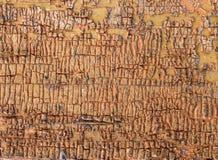 Alter hölzerner Hintergrund mit Überresten von Stücken Schrotten der alten Farbe auf Holz Beschaffenheit eines alten Baums, Brett Stockfotos