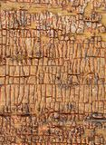 Alter hölzerner Hintergrund mit Überresten von Stücken Schrotten der alten Farbe auf Holz Beschaffenheit eines alten Baums, Brett Stockbilder