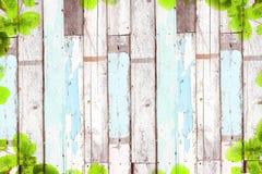 Alter hölzerner Hintergrund mit grünem Baumrahmen Lizenzfreie Stockbilder