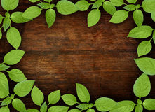 Alter hölzerner Hintergrund mit grünem Blumenfeld Lizenzfreie Stockfotos