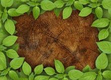 Alter hölzerner Hintergrund mit grünem Blumenfeld Lizenzfreies Stockbild
