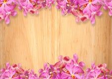 Alter hölzerner Hintergrund mit rosa Orchideenblumen Lizenzfreie Stockfotos