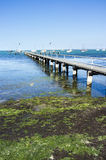 Alter hölzerner Pier Geelong Australien Sonniger Sommernachmittag blau stockfoto