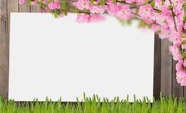 Alter hölzerner Zaun und Gras Stockbild