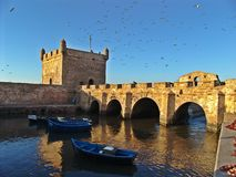 Alter Hafen Essaouira in Marokko lizenzfreie stockfotos