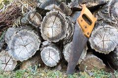 Alter Handsaw, der auf einem Stapel von hölzernen Bauholzstämmen stillsteht lizenzfreies stockfoto