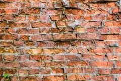 Alter heller defekter Ziegelstein-Wand-Musterdekorations-Beschaffenheitsdachboden Innen- oder außen lizenzfreies stockfoto