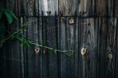 Alter Holztisch mit hölzernem Hintergrund Stockfotografie