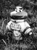 Alter Hydrant versteckt im Gras lizenzfreie stockfotos