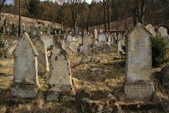 Alter jüdischer Kirchhof Stockfoto