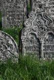 Alter jüdischer Kirchhof Stockbilder
