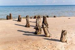 Alter Küstenschutz mit einem Wellenbrecher Hölzerne Stangen im Meer Herbstmorgen auf dem Strand der Ostsee Lizenzfreies Stockbild