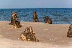 Alter Küstenschutz mit einem Wellenbrecher Hölzerne Stangen im Meer Herbstmorgen auf dem Strand der Ostsee Stockfoto