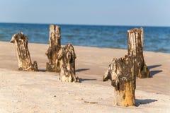 Alter Küstenschutz mit einem Wellenbrecher Hölzerne Stangen im Meer Herbstmorgen auf dem Strand der Ostsee Stockbilder