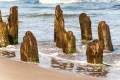 Alter Küstenschutz mit einem Wellenbrecher Hölzerne Stangen im Meer Herbstmorgen auf dem Strand der Ostsee Lizenzfreie Stockfotos
