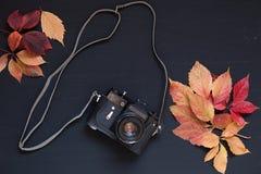 Alter Kamerahintergrund z des gelben Herbstlaubs lizenzfreies stockbild