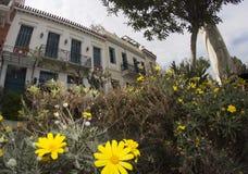 Alter klassischer Wohnsitz und Blumen von Athen stockbild