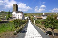 Alter Kontrollturm mit Weinbergen Stockbild
