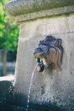 Alter Löweoberwasserbrunnen Lizenzfreies Stockbild