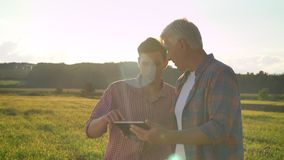 Alter Landwirt, der auf Tablette schreibt und zu seinem Erbweizenfeld, unterrichtender Sohn über die Landwirtschaft, schöne Ansic stock footage