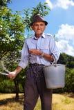 Alter Landwirt, der in einem Obstgarten befruchtet Stockfoto