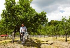 Alter Landwirt, der in einem Obstgarten befruchtet Lizenzfreies Stockfoto