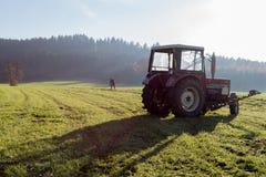 alter Landwirt, der Gras harkt Stockbild