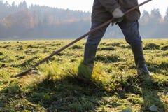 alter Landwirt, der Gras harkt Lizenzfreie Stockfotografie