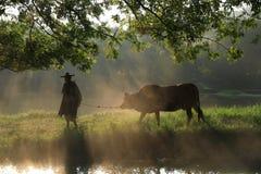 Alter Landwirt unter dem alten Banyanbaum lizenzfreie stockbilder
