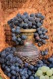 Alter Lehmweinkrug umgeben durch Bündel der blauen Traube Lizenzfreie Stockfotos