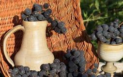 Alter Lehmweinkrug und -glas umgeben durch Bündel der blauen Traube mit Weidenkorb als Hintergrund Lizenzfreie Stockfotos