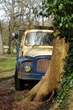 Alter LKW unter einem Baum Stockbilder