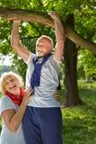 Alter Mann, der ZugUPS auf einem Baum tut Stockfotografie
