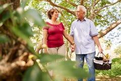 Alter Mann-Frauen-ältere Paare, die mit Picknick-Korb gehen Lizenzfreie Stockbilder