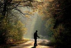 alter Mann im Herbstwald am Sonnenaufgang Stockbild