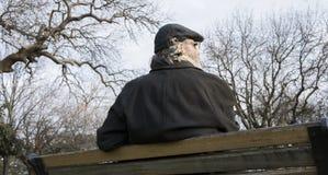 Alter Mann im Park lizenzfreie stockbilder