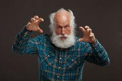 Alter Mann mit einem langen Bart mit großem Lächeln Stockfotografie